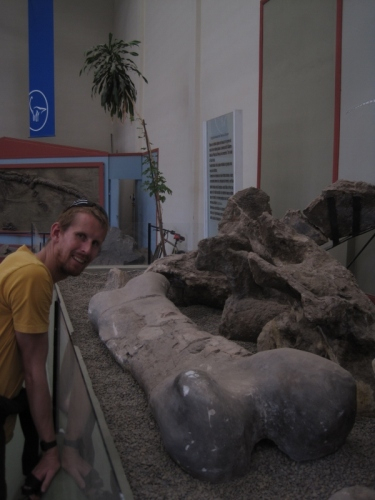Geoff with the biggest femur in the world: Argentosaurus