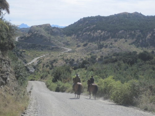 Tamed horses riding along the Carretera Austral
